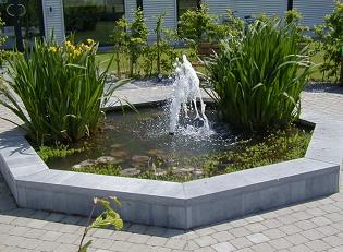 Fontaine / étang